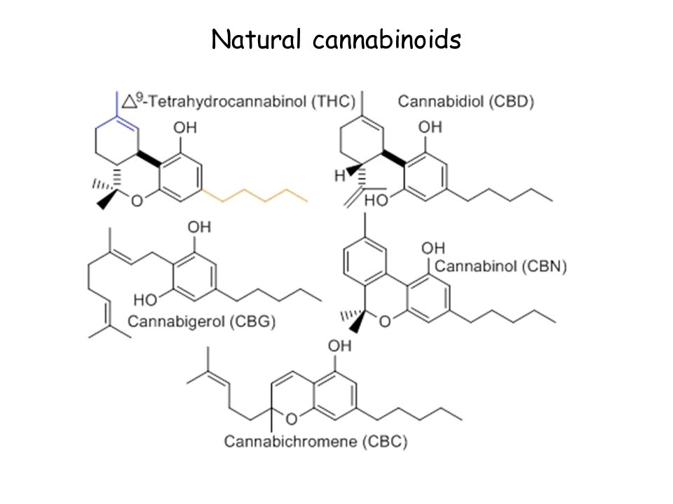 Natural cannabinoids