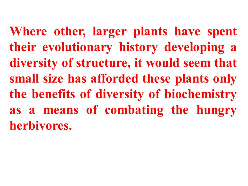 Where other, larger plants have spent their evolutionary history developing a diversity of structure, it would seem that small size has afforded these plants only the benefits of diversity of biochemistry as a means of combating the hungry herbivores.