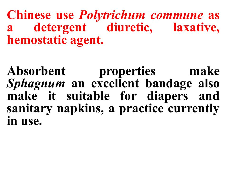 Chinese use Polytrichum commune as a detergent diuretic, laxative, hemostatic agent. Absorbent properties make Sphagnum an excellent bandage also make