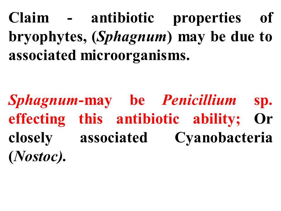 Claim - antibiotic properties of bryophytes, (Sphagnum) may be due to associated microorganisms. Sphagnum-may be Penicillium sp. effecting this antibi