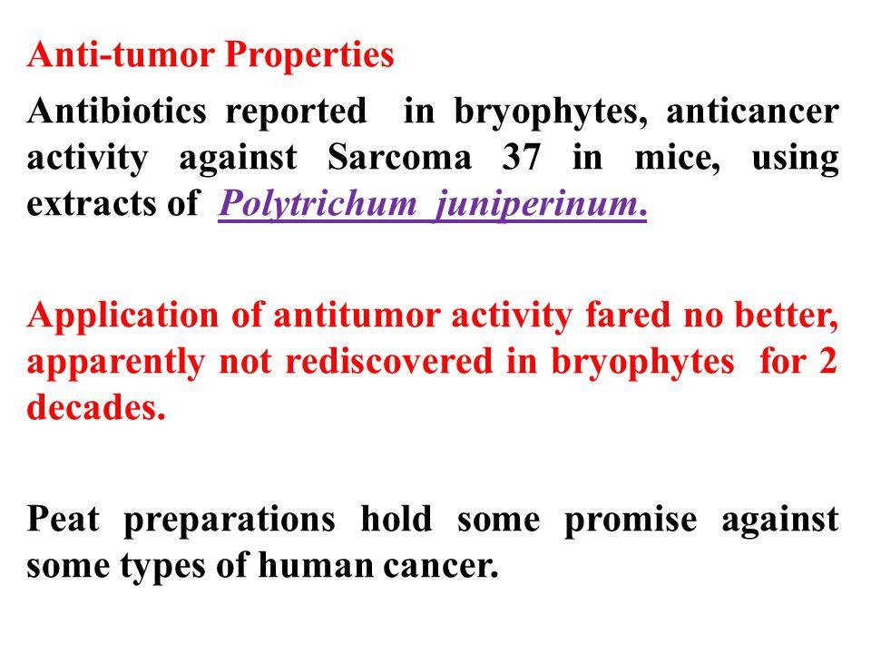 Anti-tumor Properties Antibiotics reported in bryophytes, anticancer activity against Sarcoma 37 in mice, using extracts of Polytrichum juniperinum.