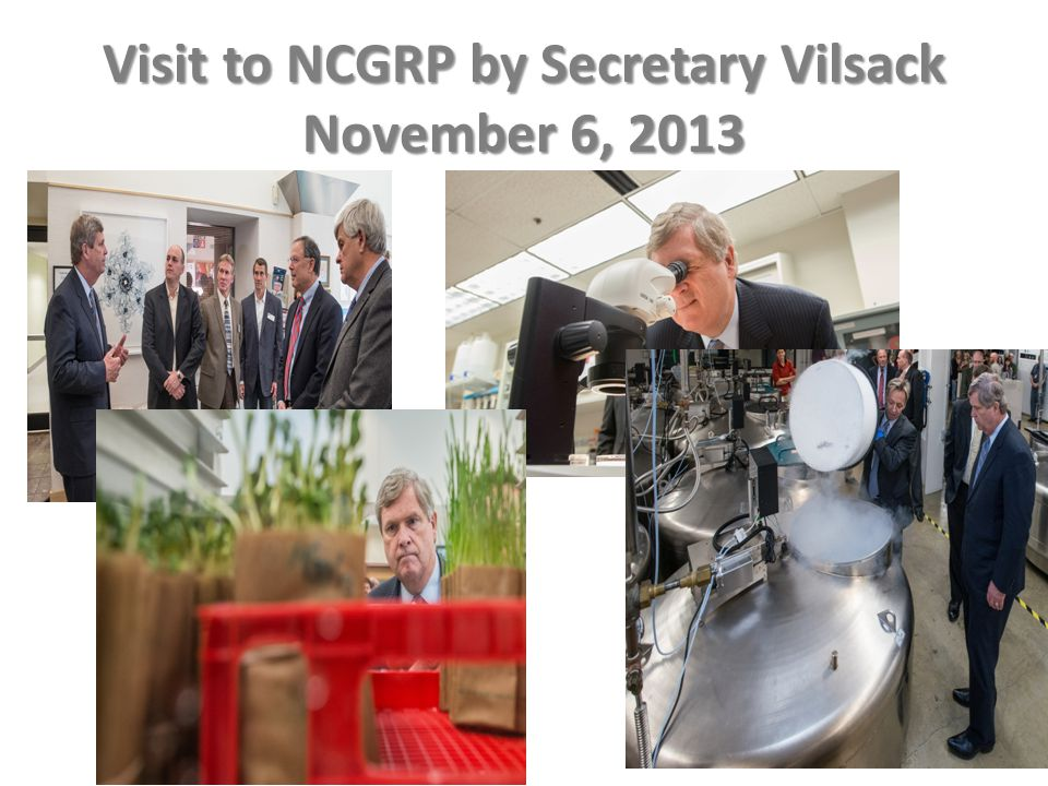 Visit to NCGRP by Secretary Vilsack November 6, 2013
