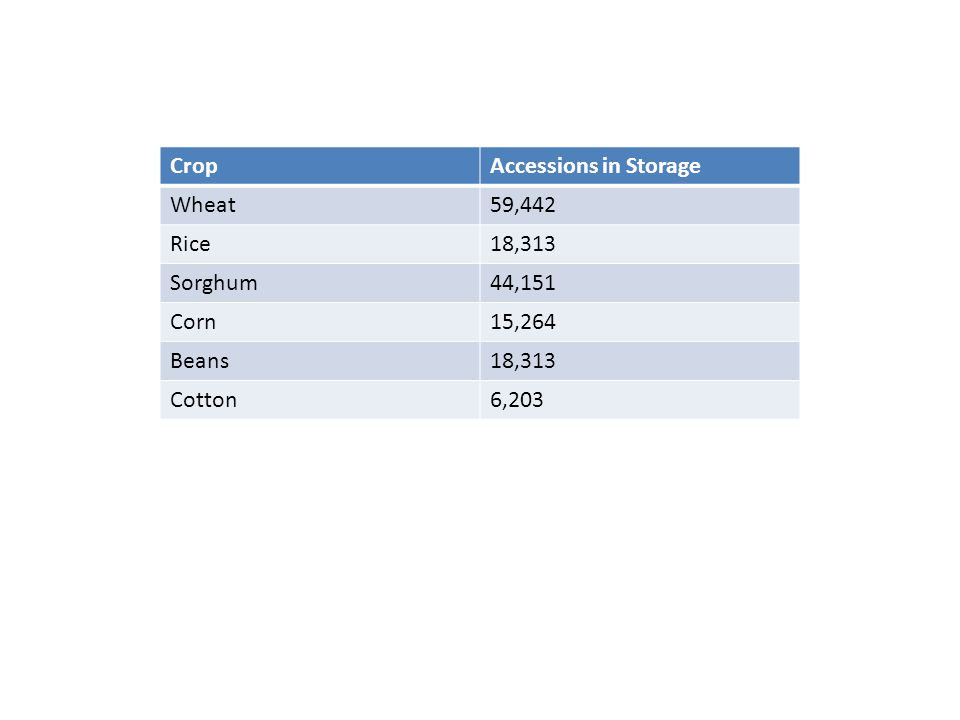 CropAccessions in Storage Wheat59,442 Rice18,313 Sorghum44,151 Corn15,264 Beans18,313 Cotton6,203