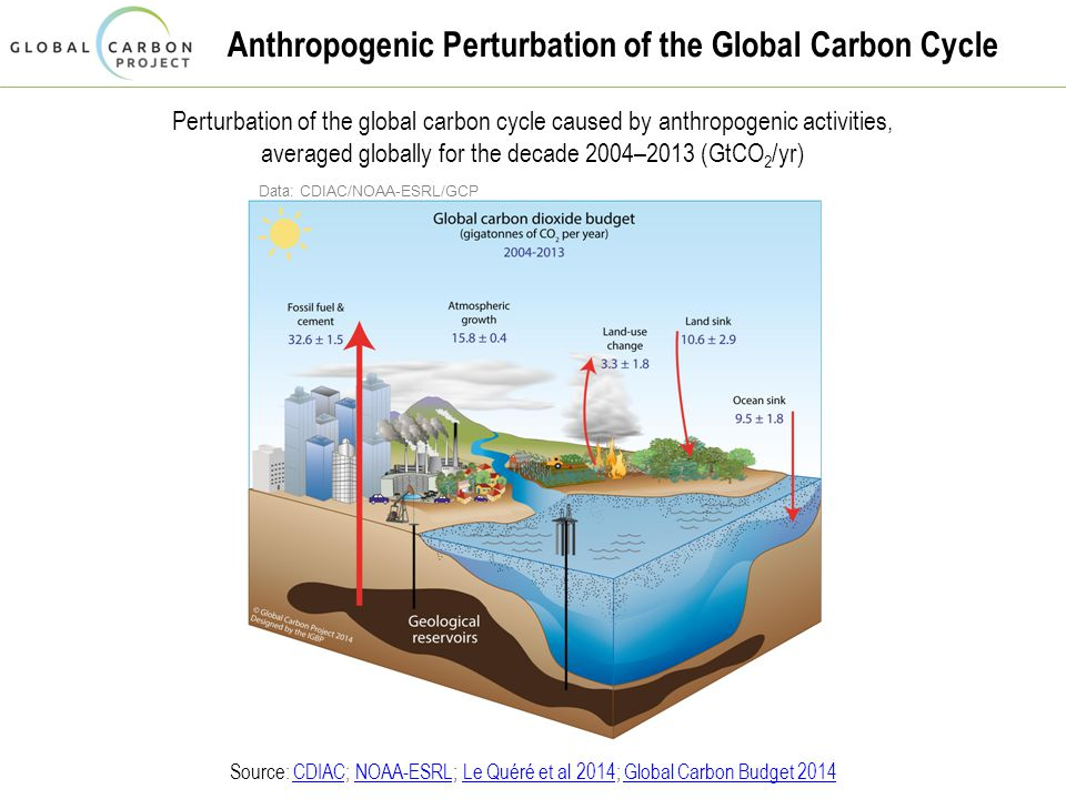 Anthropogenic Perturbation of the Global Carbon Cycle Perturbation of the global carbon cycle caused by anthropogenic activities, averaged globally for the decade 2004–2013 (GtCO 2 /yr) Source: CDIAC; NOAA-ESRL; Le Quéré et al 2014; Global Carbon Budget 2014CDIACNOAA-ESRLLe Quéré et al 2014Global Carbon Budget 2014 Data: CDIAC/NOAA-ESRL/GCP