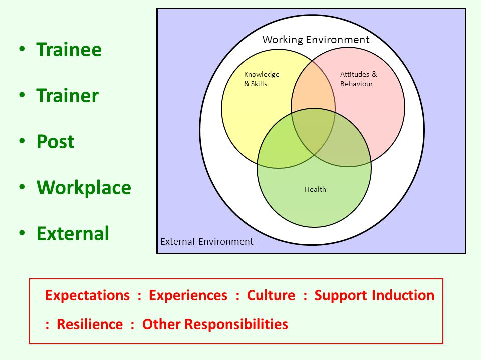 Knowledge & Skills Attitudes & Behaviour Health Working Environment External Environment Trainee Trainer Post Workplace External Expectations : Experiences : Culture : Support Induction : Resilience : Other Responsibilities