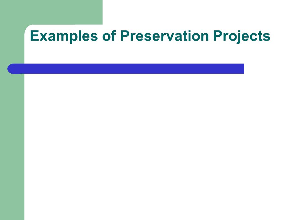Examples of Preservation Projects