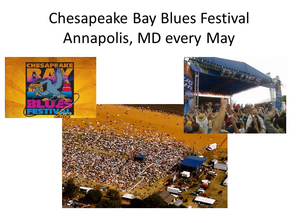 Chesapeake Bay Blues Festival Annapolis, MD every May