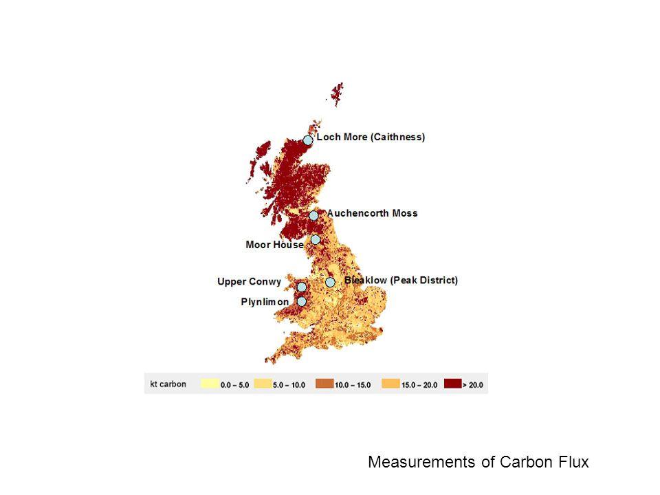 Measurements of Carbon Flux