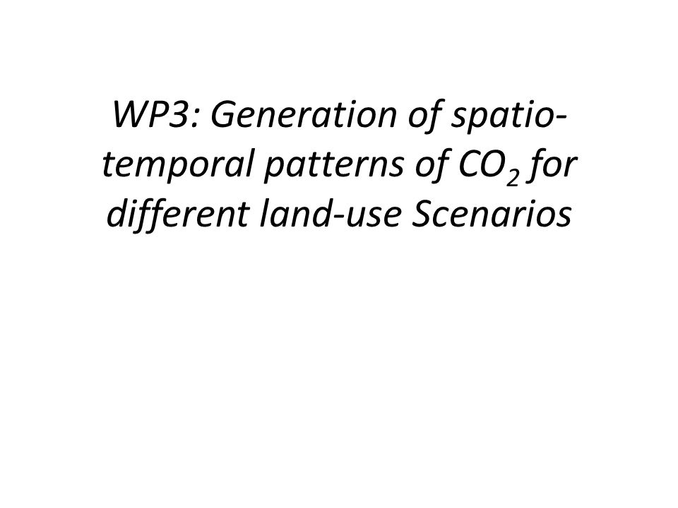 WP3: Generation of spatio- temporal patterns of CO 2 for different land-use Scenarios