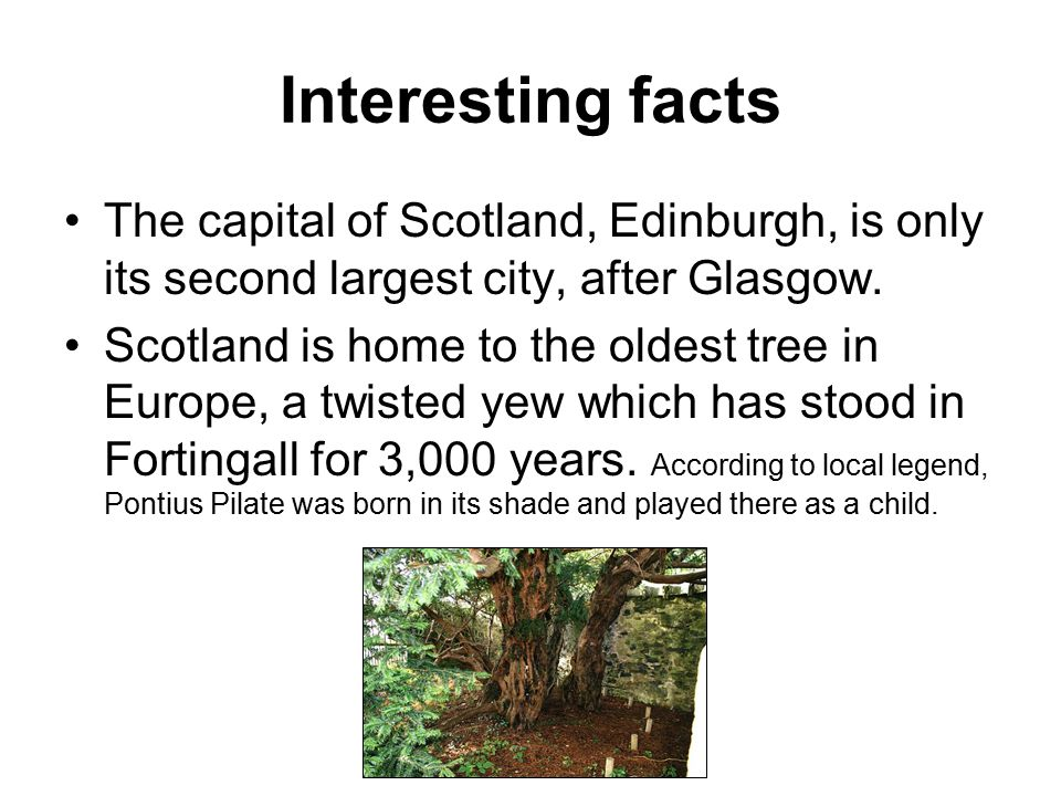 Interesting facts The modern game of golf was first dveloped and established in Scotland in the 15th century.
