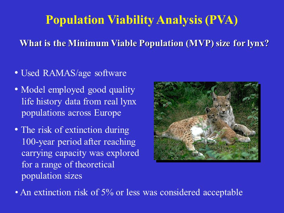 Population Viability Analysis (PVA) Used RAMAS/age software Model employed good quality life history data from real lynx populations across Europe Wha