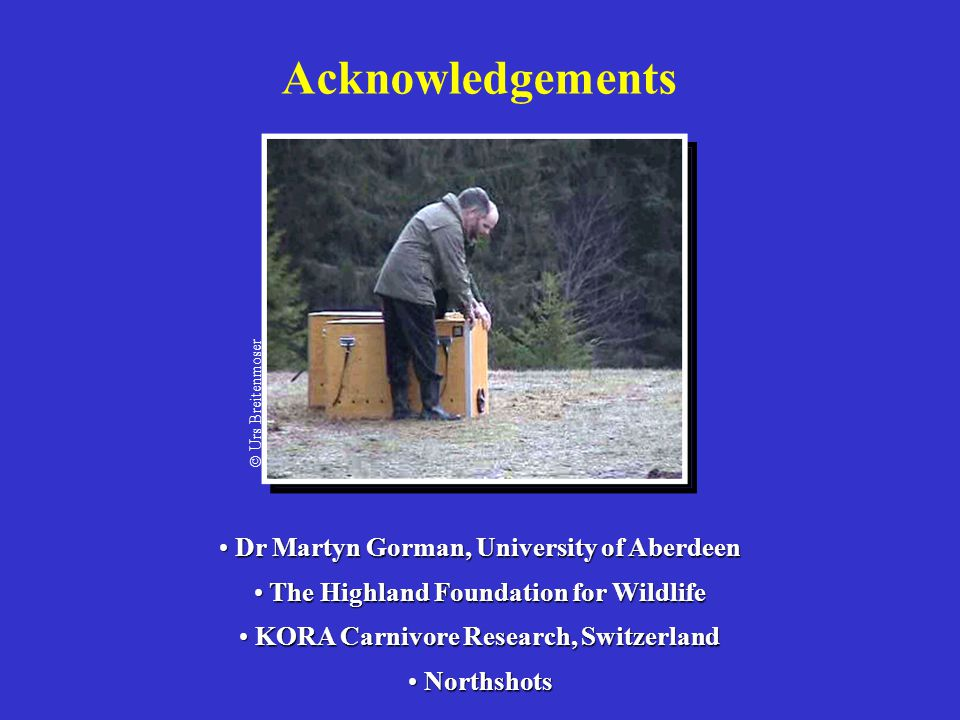 Acknowledgements Dr Martyn Gorman, University of Aberdeen Dr Martyn Gorman, University of Aberdeen The Highland Foundation for Wildlife The Highland F