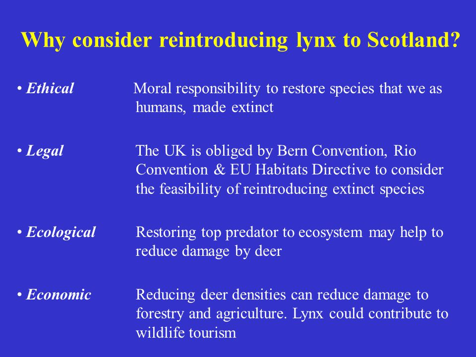 Why consider reintroducing lynx to Scotland? Ethical Moral responsibility to restore species that we as humans, made extinct Legal The UK is obliged b