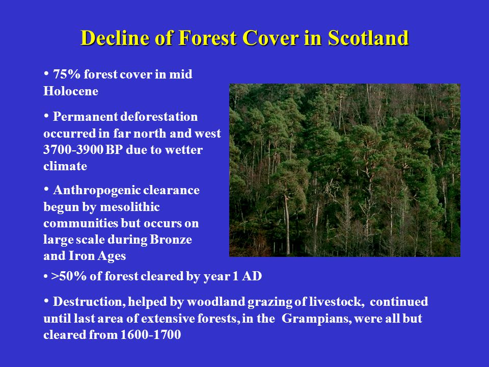 Decline of Forest Cover in Scotland 75% forest cover in mid Holocene Permanent deforestation occurred in far north and west 3700-3900 BP due to wetter