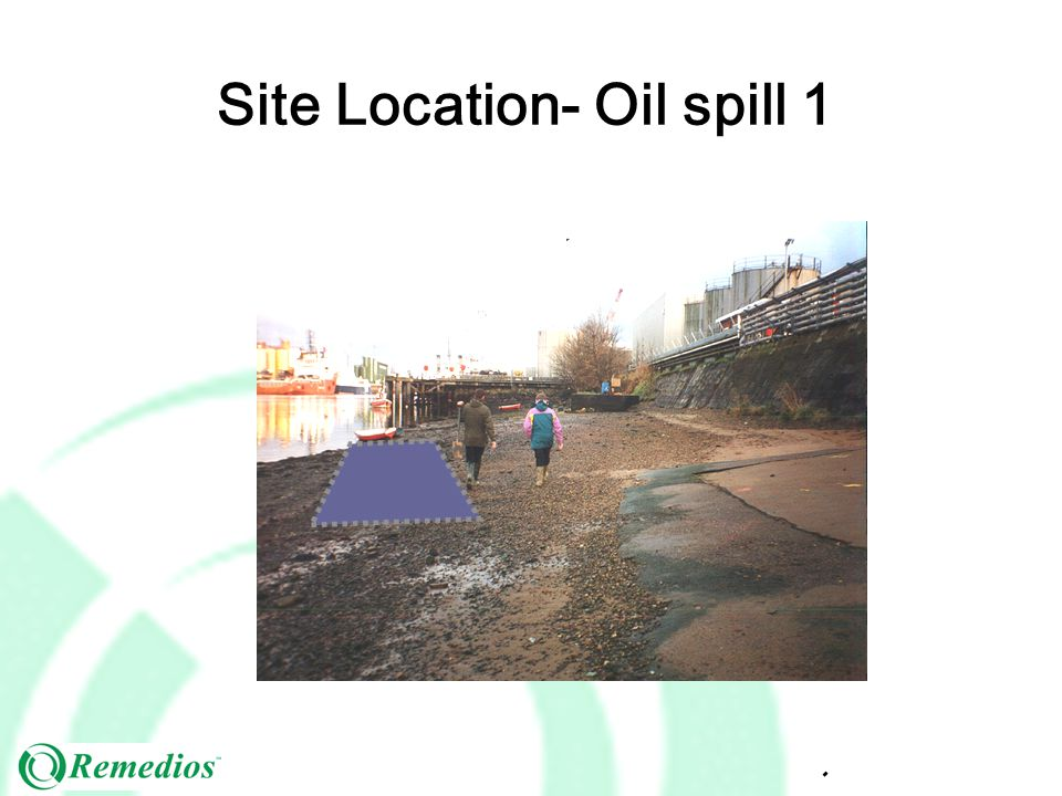 Site Location- Oil spill 1