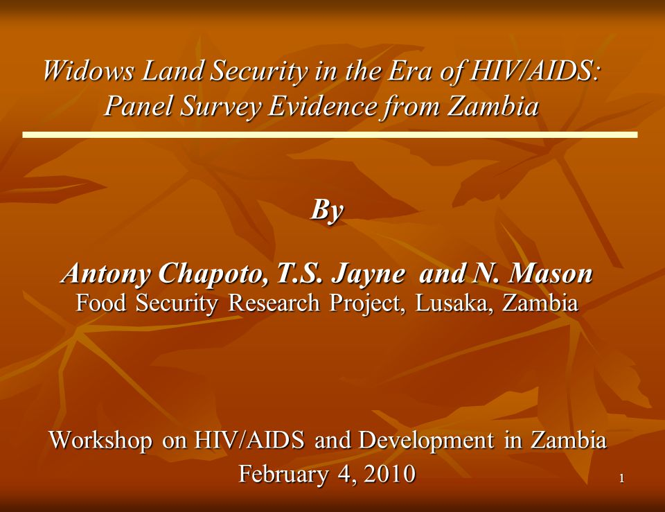 1 Widows Land Security in the Era of HIV/AIDS: Panel Survey Evidence from Zambia By Antony Chapoto, T.S. Jayne and N. Mason Food Security Research Pro
