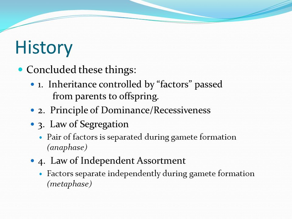 """History Concluded these things: 1. Inheritance controlled by """"factors"""" passed from parents to offspring. 2. Principle of Dominance/Recessiveness 3. La"""