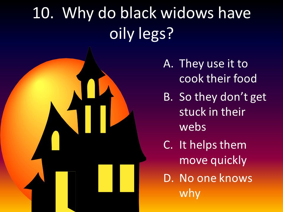 10. Why do black widows have oily legs.