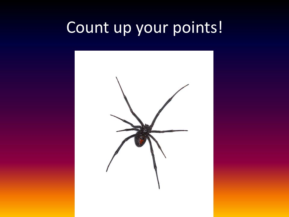 Count up your points!