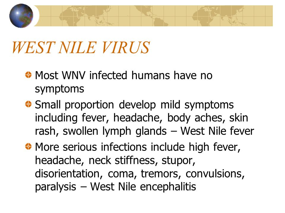 WEST NILE VIRUS Most WNV infected humans have no symptoms Small proportion develop mild symptoms including fever, headache, body aches, skin rash, swollen lymph glands – West Nile fever More serious infections include high fever, headache, neck stiffness, stupor, disorientation, coma, tremors, convulsions, paralysis – West Nile encephalitis