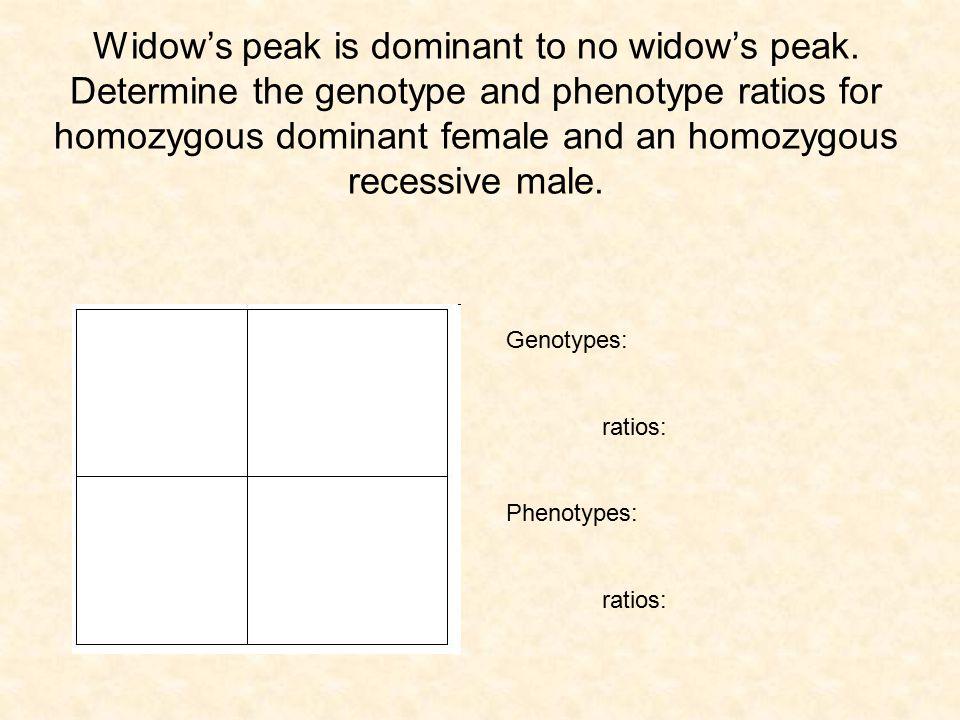 Widow's peak is dominant to no widow's peak. Determine the genotype and phenotype ratios for homozygous dominant female and an homozygous recessive ma