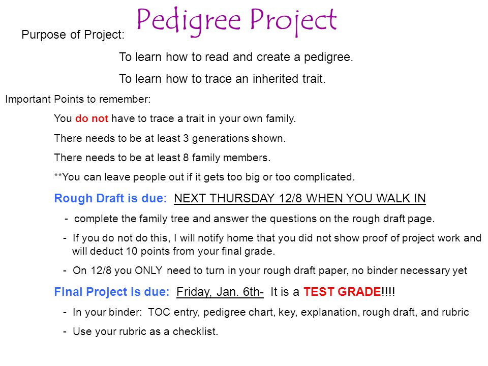 Purpose of Project: To learn how to read and create a pedigree.