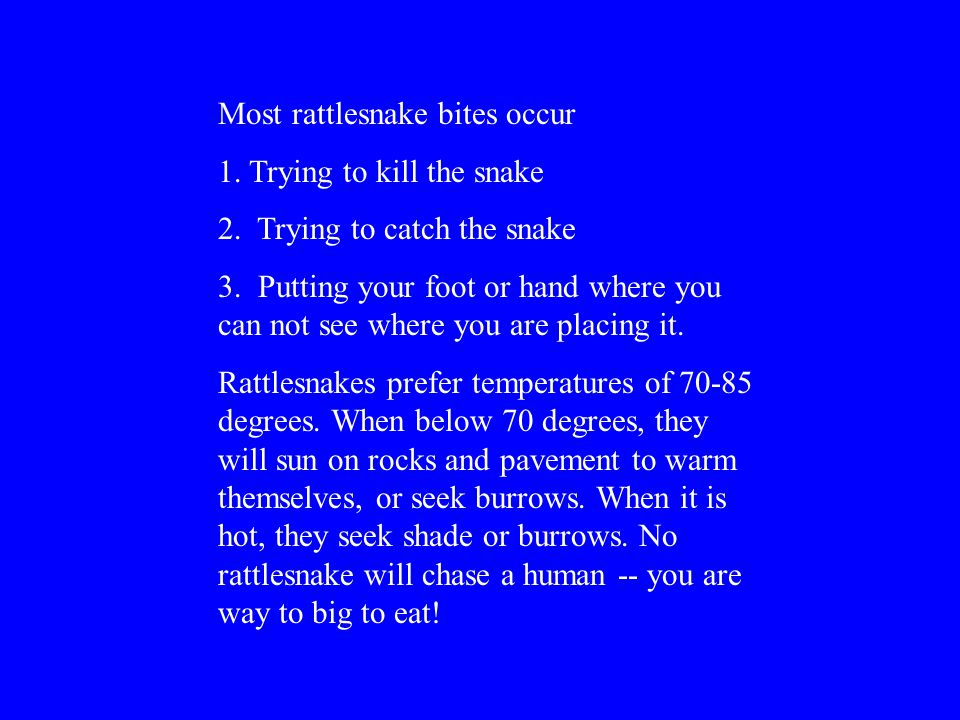 Most rattlesnake bites occur 1.Trying to kill the snake 2.