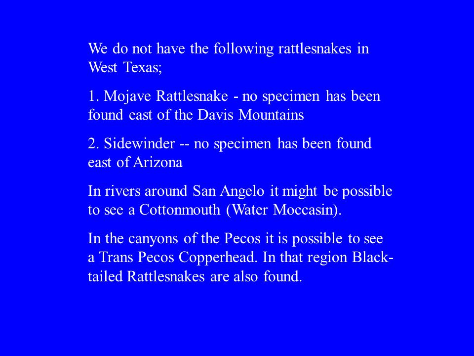 We do not have the following rattlesnakes in West Texas; 1.
