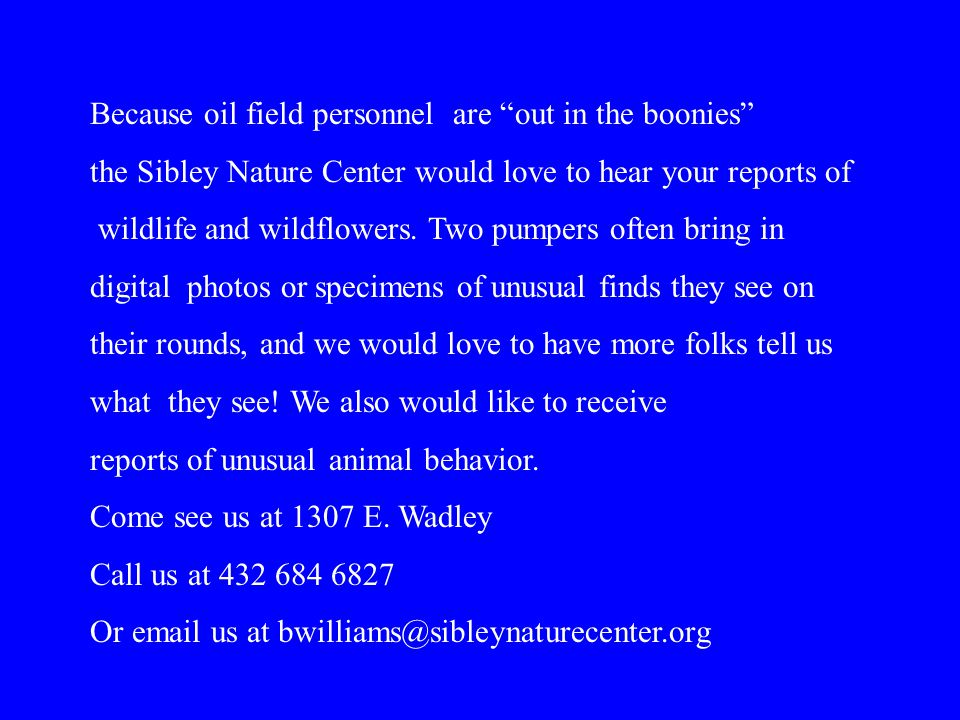 Because oil field personnel are out in the boonies the Sibley Nature Center would love to hear your reports of wildlife and wildflowers.