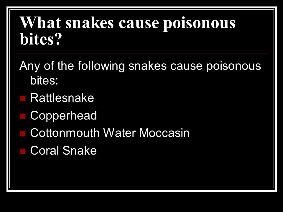What snakes cause poisonous bites? Any of the following snakes cause poisonous bites: Rattlesnake Copperhead Cottonmouth Water Moccasin Coral Snake