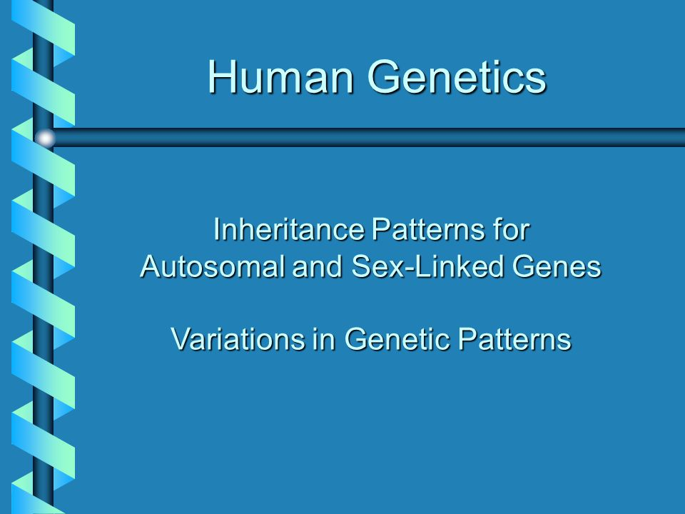 Human Genetics Inheritance Patterns for Autosomal and Sex-Linked Genes Variations in Genetic Patterns