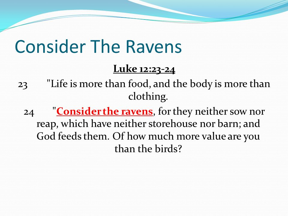 Consider The Ravens Luke 12:23-24 23 Life is more than food, and the body is more than clothing.