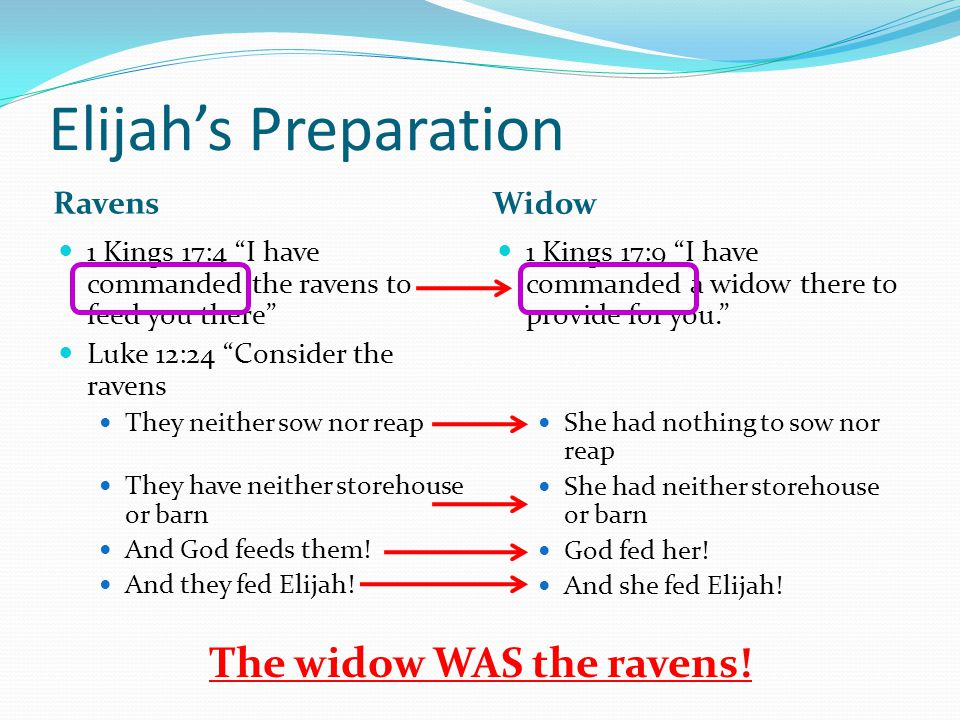 Elijah's Preparation Ravens Widow 1 Kings 17:4 I have commanded the ravens to feed you there Luke 12:24 Consider the ravens They neither sow nor reap They have neither storehouse or barn And God feeds them.