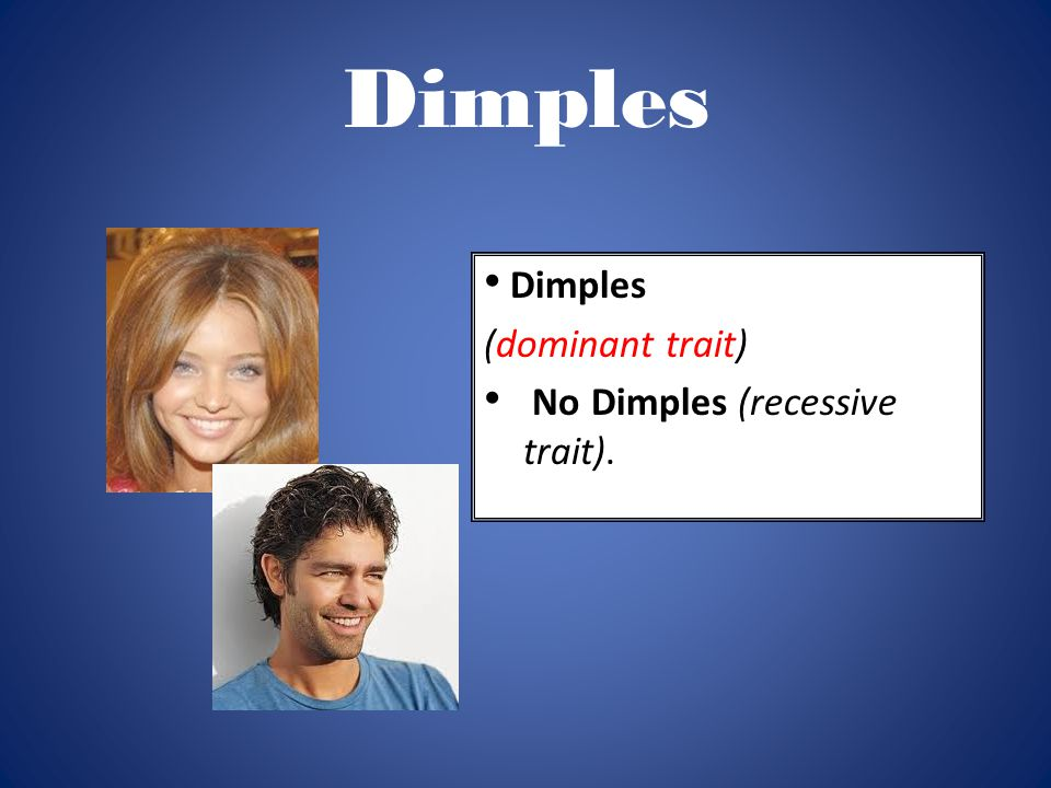 Dimples (dominant trait) No Dimples (recessive trait).
