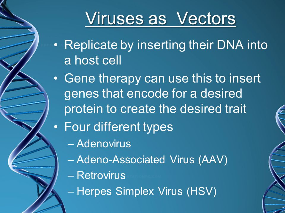 Gene Therapy To design and carry out a gene therapy treatment, a researcher must: 1.Identify the gene(s) responsible for the disorder. 2.Make copies o