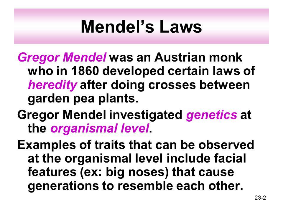 23-2 Mendel's Laws Gregor Mendel was an Austrian monk who in 1860 developed certain laws of heredity after doing crosses between garden pea plants.