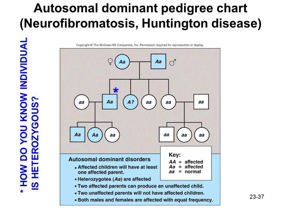 23-37 Autosomal dominant pedigree chart (Neurofibromatosis, Huntington disease) * HOW DO YOU KNOW INDIVIDUAL IS HETEROZYGOUS.