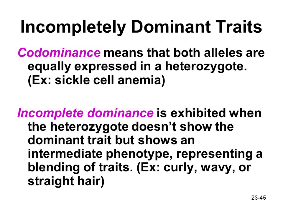 23-45 Incompletely Dominant Traits Codominance means that both alleles are equally expressed in a heterozygote.