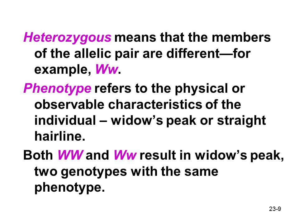 23-9 Heterozygous means that the members of the allelic pair are different—for example, Ww.