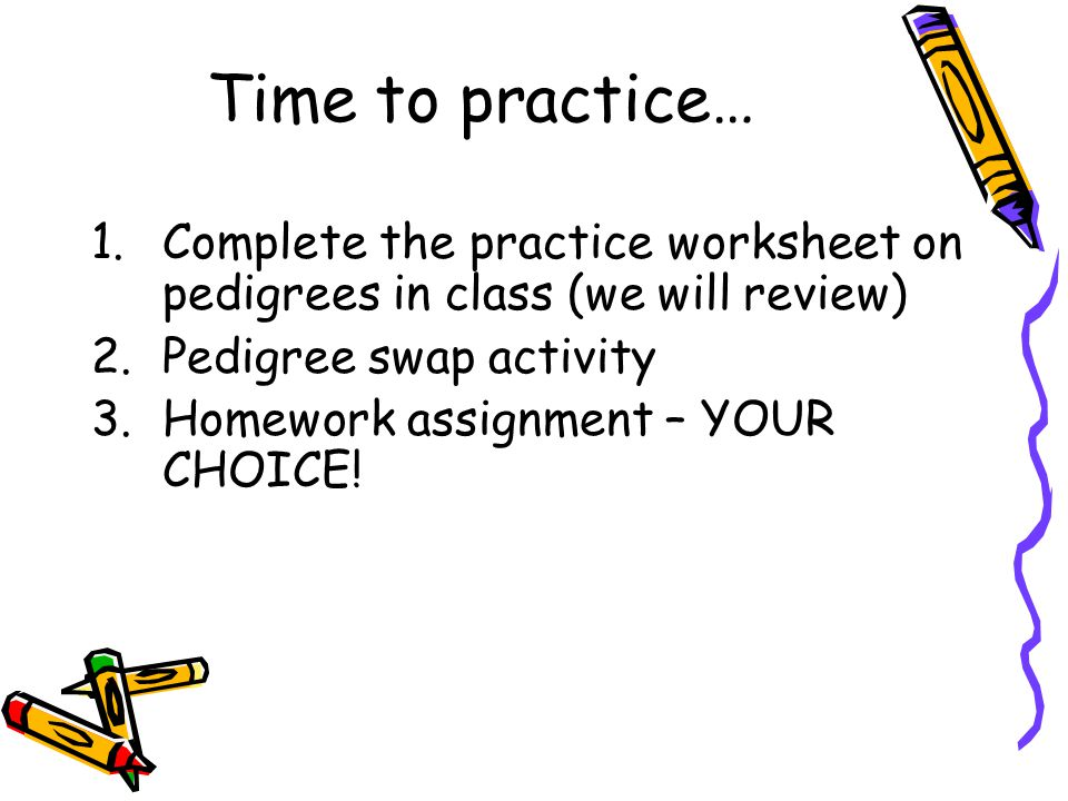 Time to practice… 1.Complete the practice worksheet on pedigrees in class (we will review) 2.Pedigree swap activity 3.Homework assignment – YOUR CHOIC
