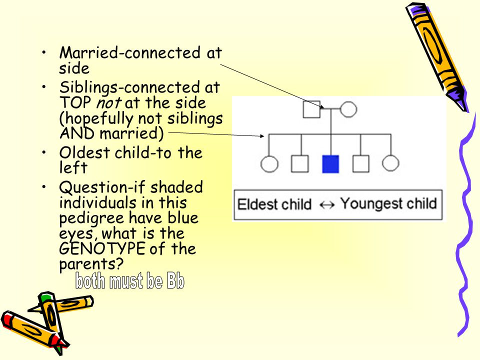 Married-connected at side Siblings-connected at TOP not at the side (hopefully not siblings AND married) Oldest child-to the left Question-if shaded i