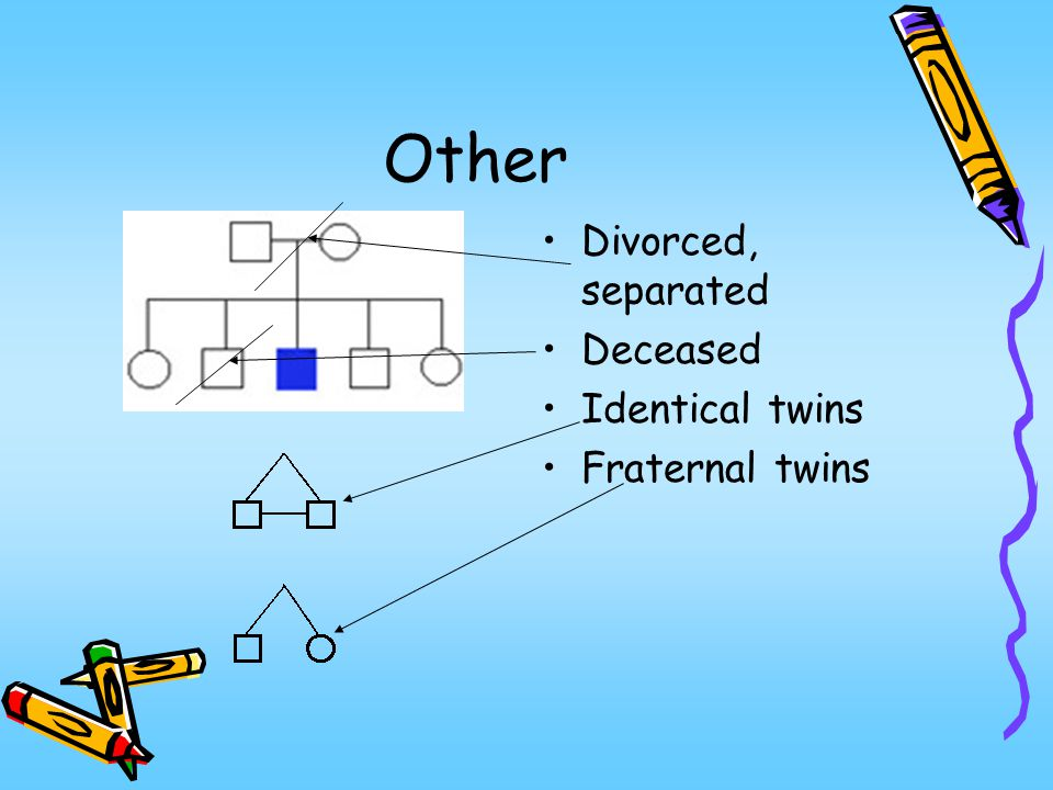 Other Divorced, separated Deceased Identical twins Fraternal twins