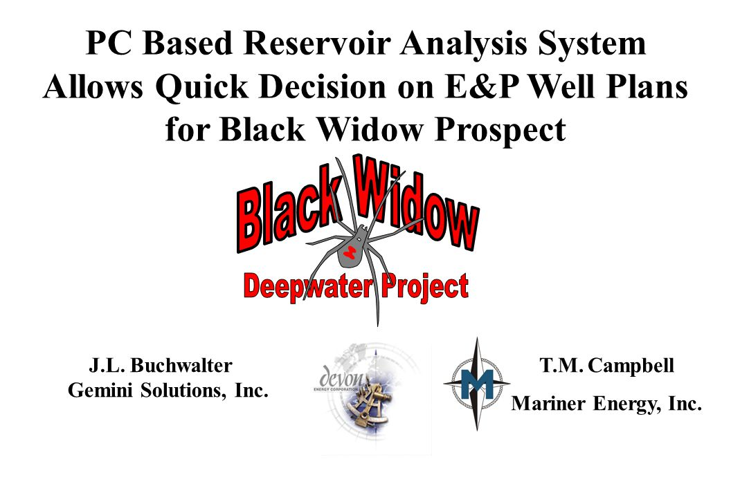 PC Based Reservoir Analysis System Allows Quick Decision on E&P Well Plans for Black Widow Prospect J.L.