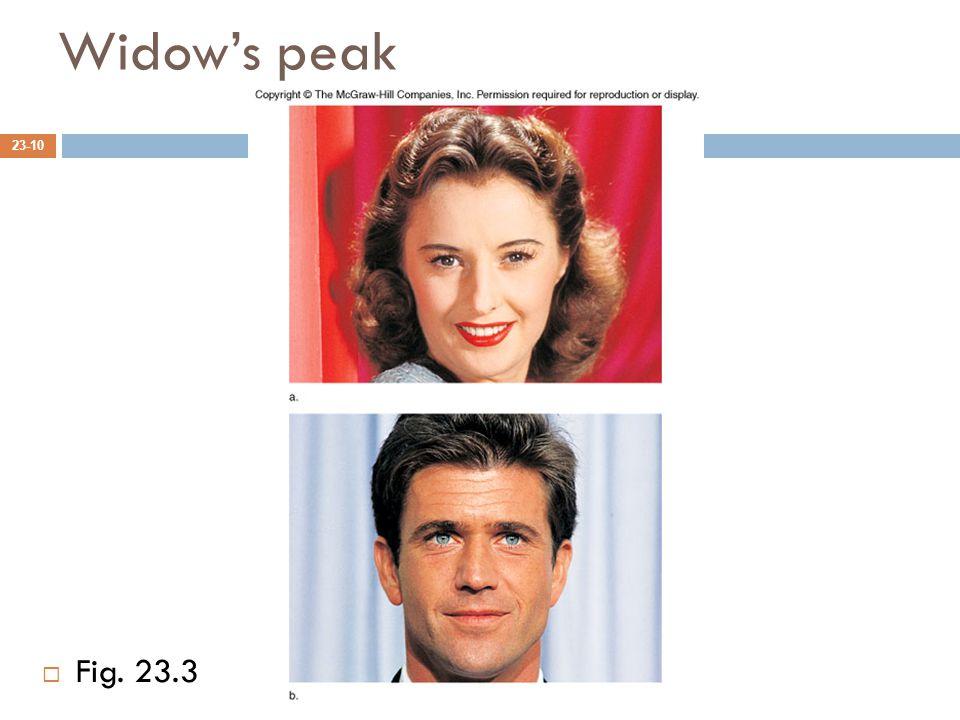 Widow's peak 23-10  Fig. 23.3