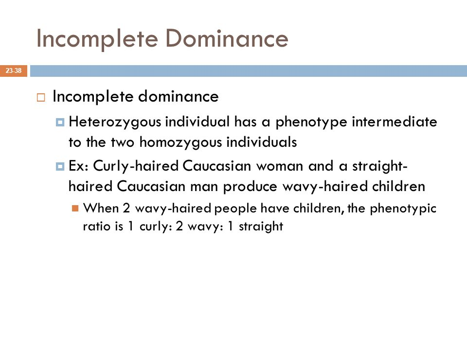 Incomplete Dominance  Incomplete dominance  Heterozygous individual has a phenotype intermediate to the two homozygous individuals  Ex: Curly-haired Caucasian woman and a straight- haired Caucasian man produce wavy-haired children When 2 wavy-haired people have children, the phenotypic ratio is 1 curly: 2 wavy: 1 straight 23-38