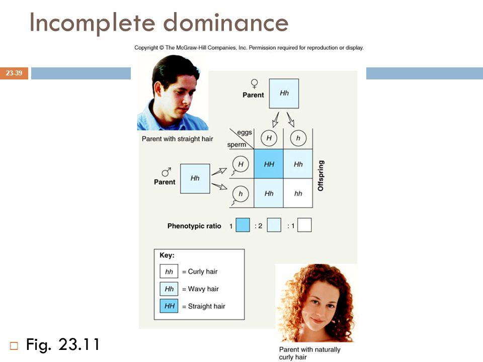 Incomplete dominance 23-39  Fig. 23.11