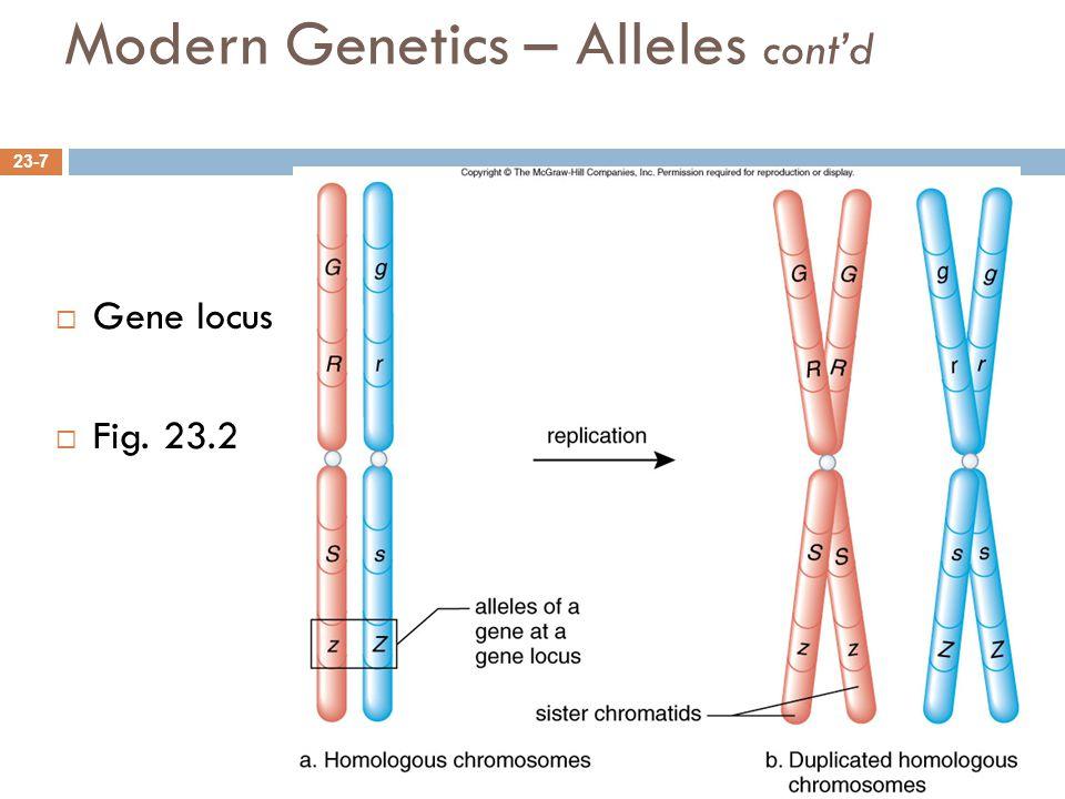 Modern Genetics – Alleles cont'd 23-7  Gene locus  Fig. 23.2
