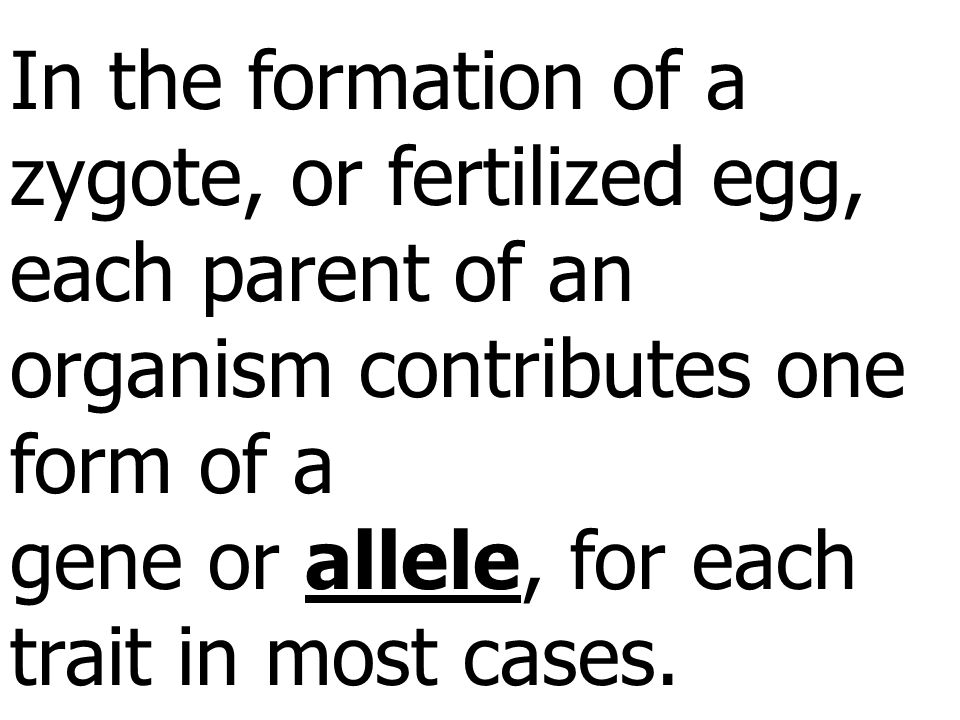 In the formation of a zygote, or fertilized egg, each parent of an organism contributes one form of a gene or allele, for each trait in most cases.