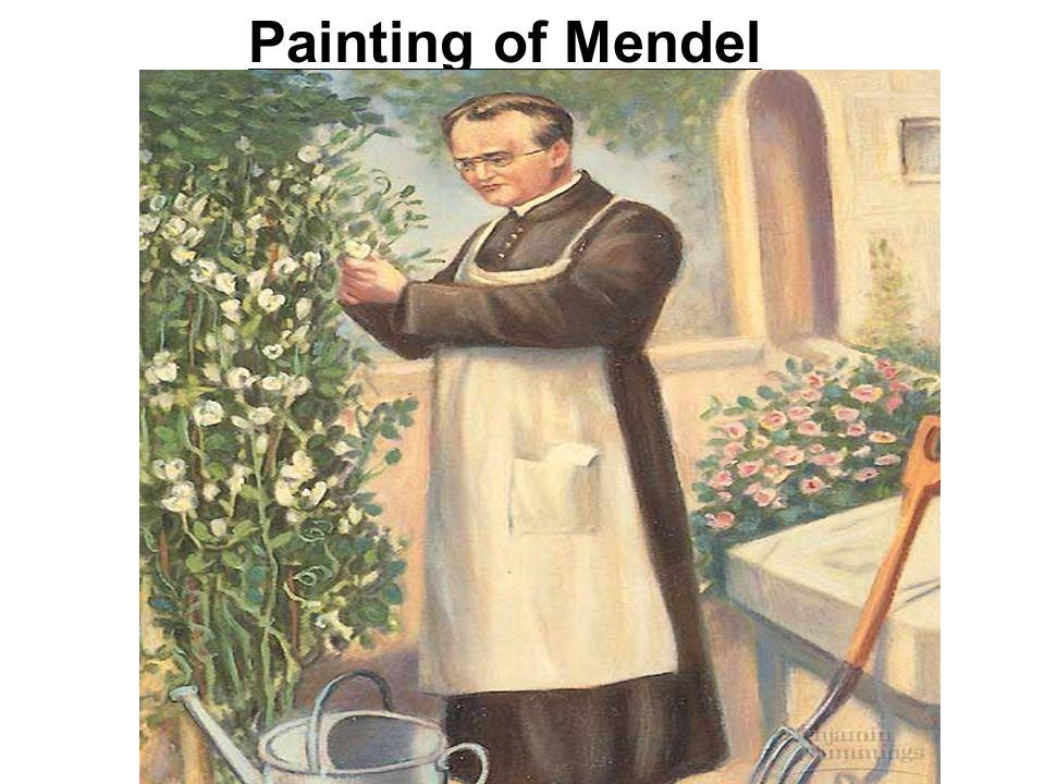 Painting of Mendel