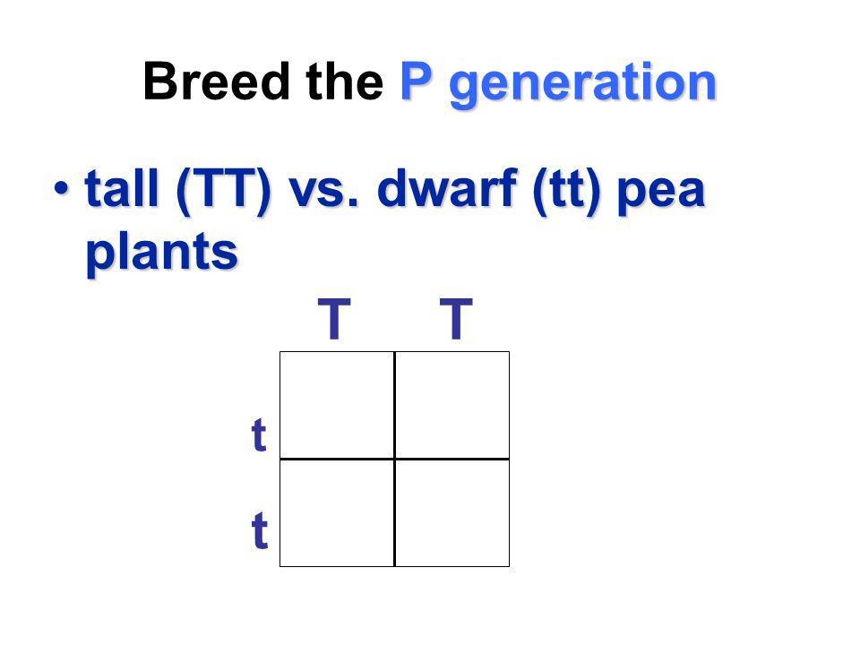 P generation Breed the P generation tall (TT) vs. dwarf (tt) pea plantstall (TT) vs. dwarf (tt) pea plants t t TT